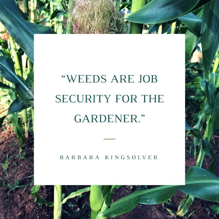 Gardening Quote: Weeds are Job Security for the Gardener