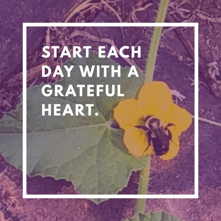 Gardening Quote: Start Each Day with a Grateful Heart
