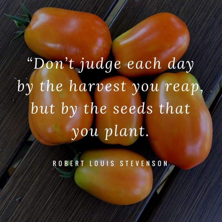 Gardening Quote: Don't Judge Each Day By the Harvest You Reap, But By the Seeds You Plant