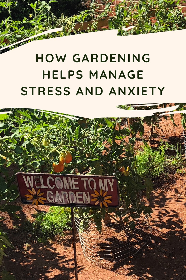 How Gardening Helps Manage Stress and Anxiety